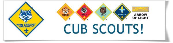 CubScoutsBanner