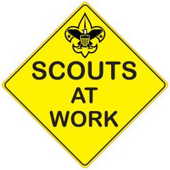 Scouts at Work